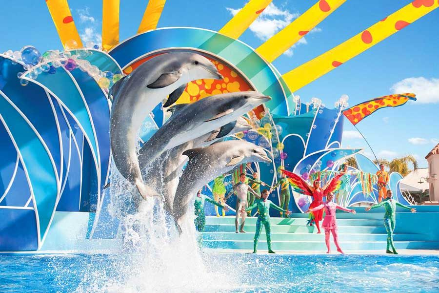 Seaworld_dolphins_900x600px